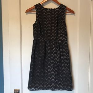Loft black lace little dress - 0P